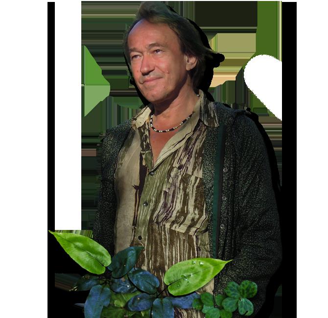 Bienvenue sur mur vegetal patrick blanc mur vegetal for Vegetal en anglais