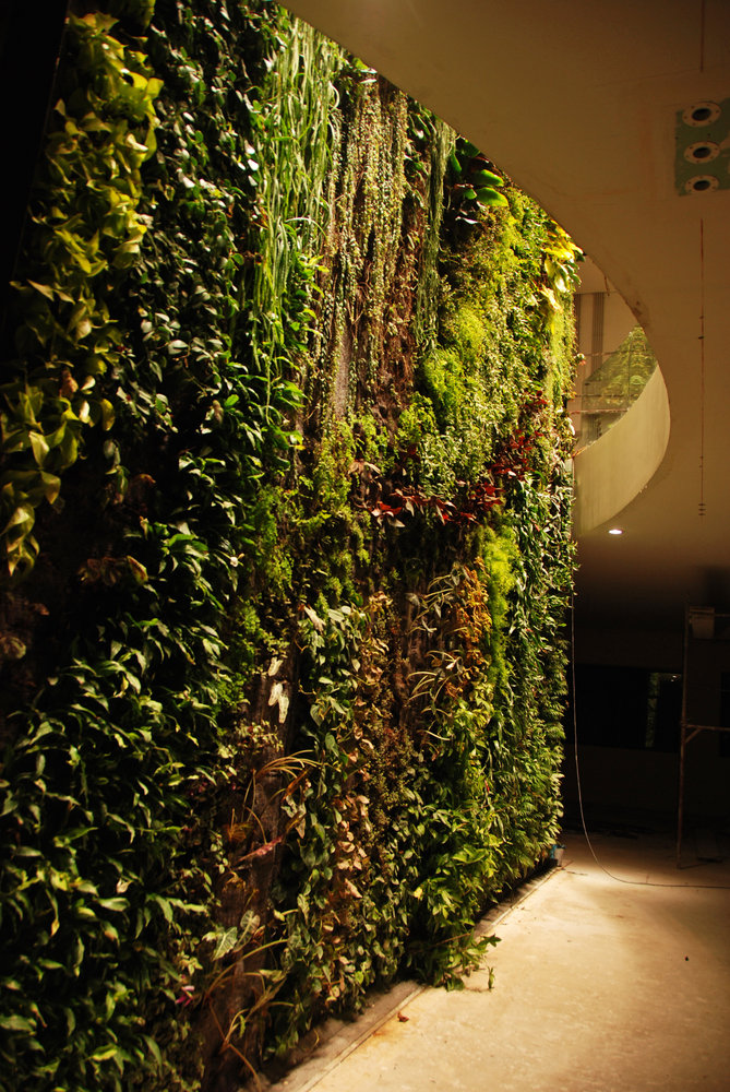 Maison Priv 233 E Mur Vegetal Patrick Blanc