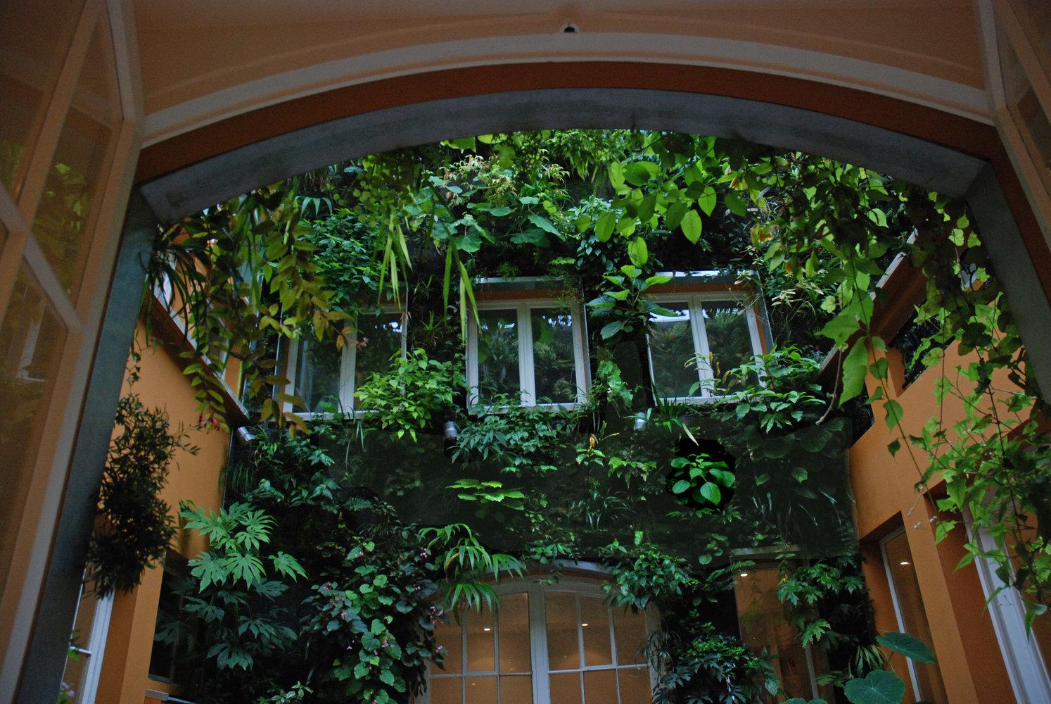Maison de patrick blanc mur vegetal patrick blanc