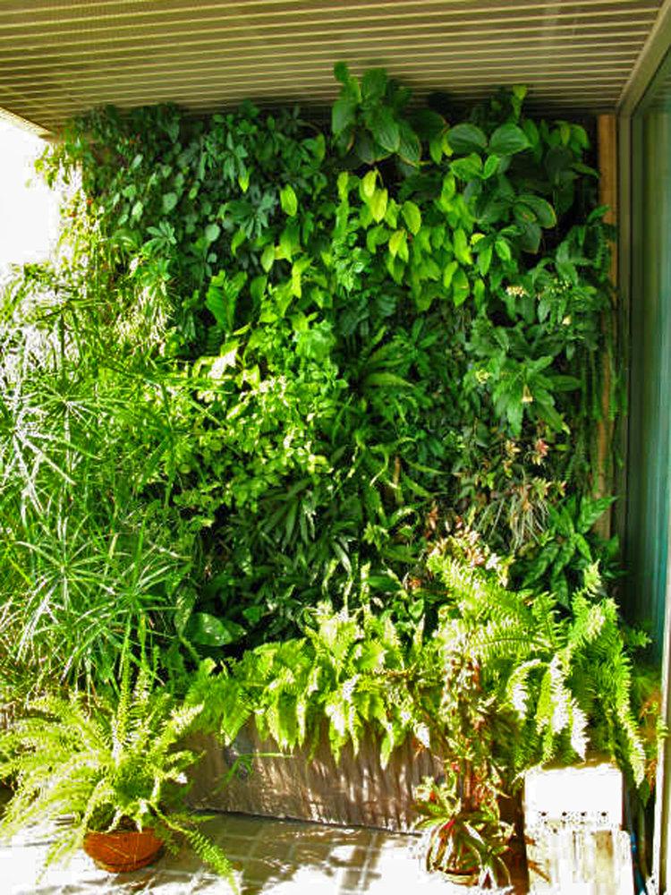 terrasse d 39 un appartement mur vegetal patrick blanc. Black Bedroom Furniture Sets. Home Design Ideas