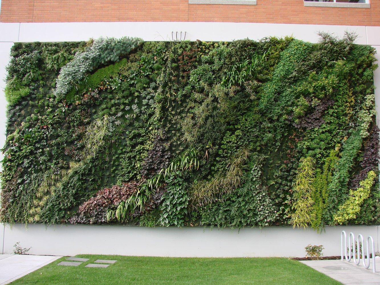 Tacoma goodwill mur vegetal patrick blanc for Comment faire un mur vegetal