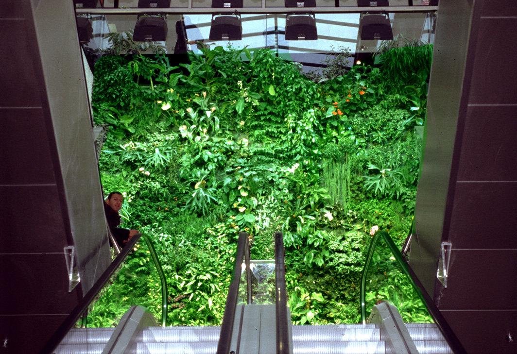 centre commercial les passages boulogne billancourt mur vegetal patrick blanc. Black Bedroom Furniture Sets. Home Design Ideas