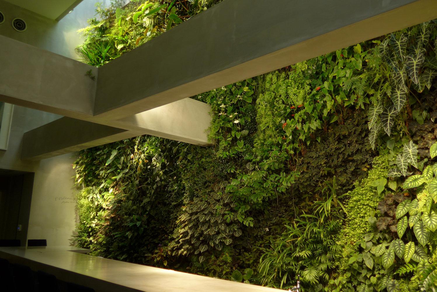Costume National Fukuoka Mur Vegetal Patrick Blanc