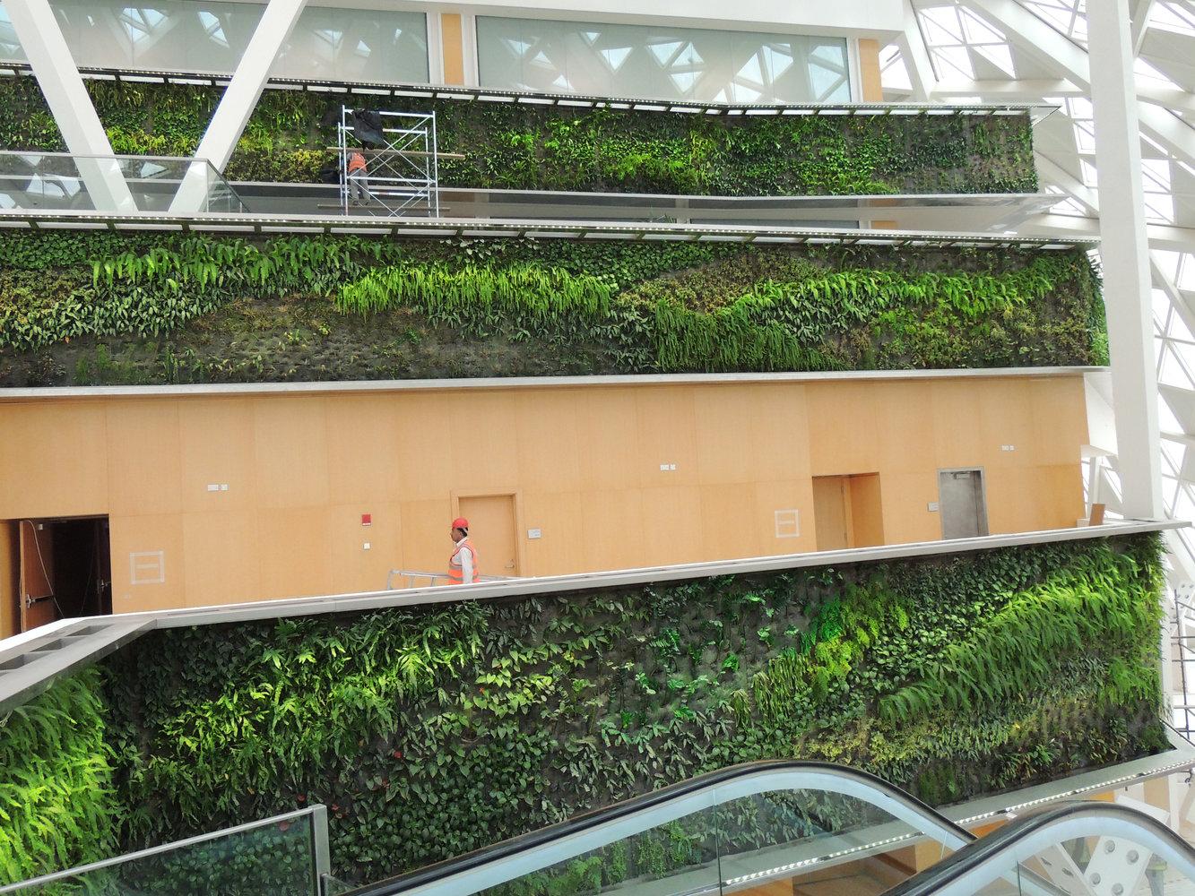 kafd conference center indoor riyadh mur vegetal patrick blanc. Black Bedroom Furniture Sets. Home Design Ideas