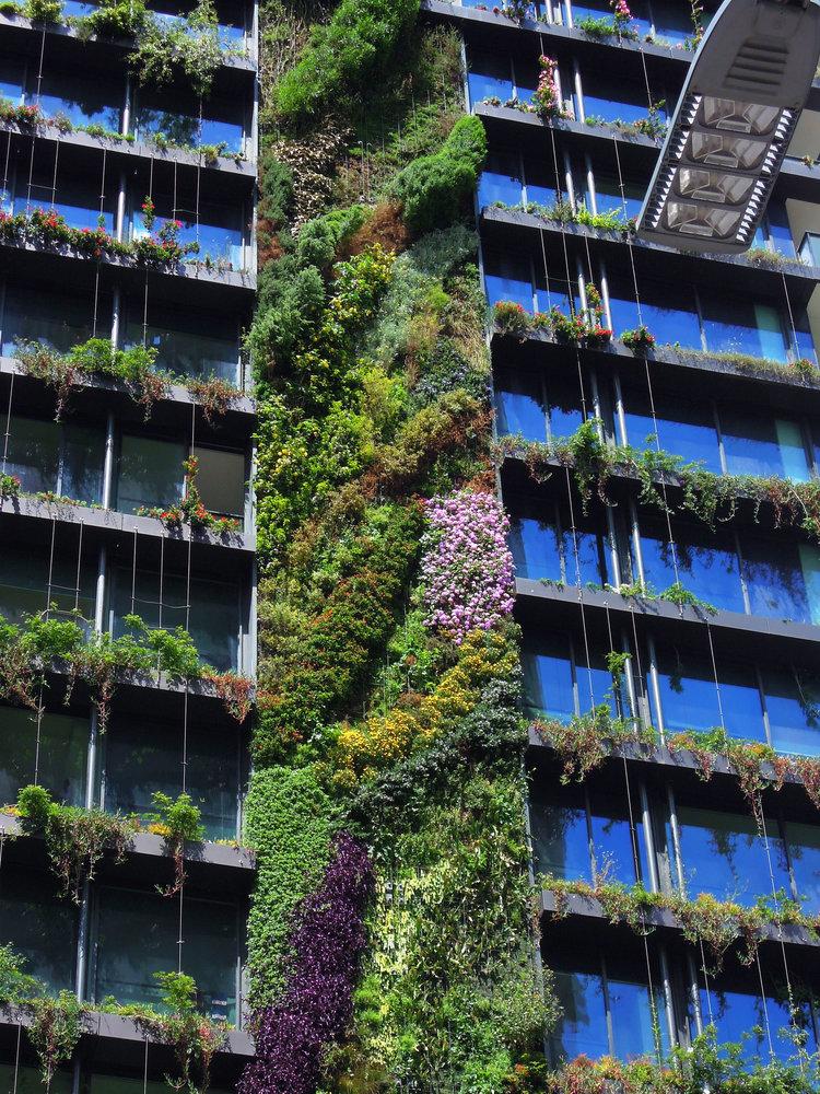 One Central Park Sydney Mur Vegetal Patrick Blanc