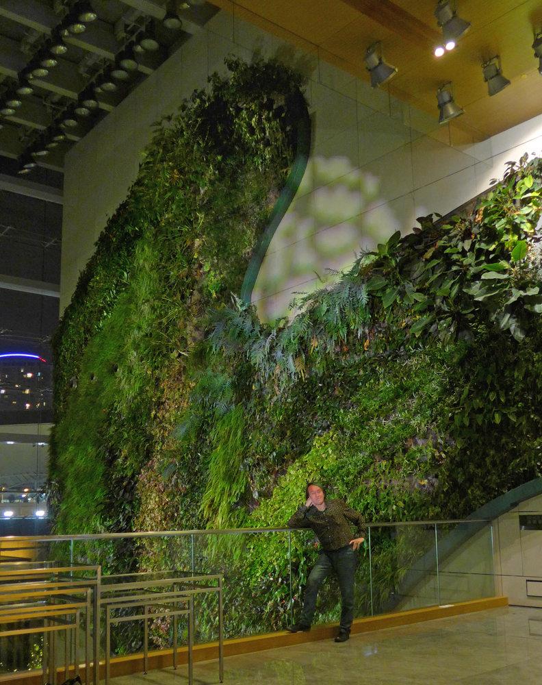Icon Hotel Hong Kong Polytechnic University Mur Vegetal
