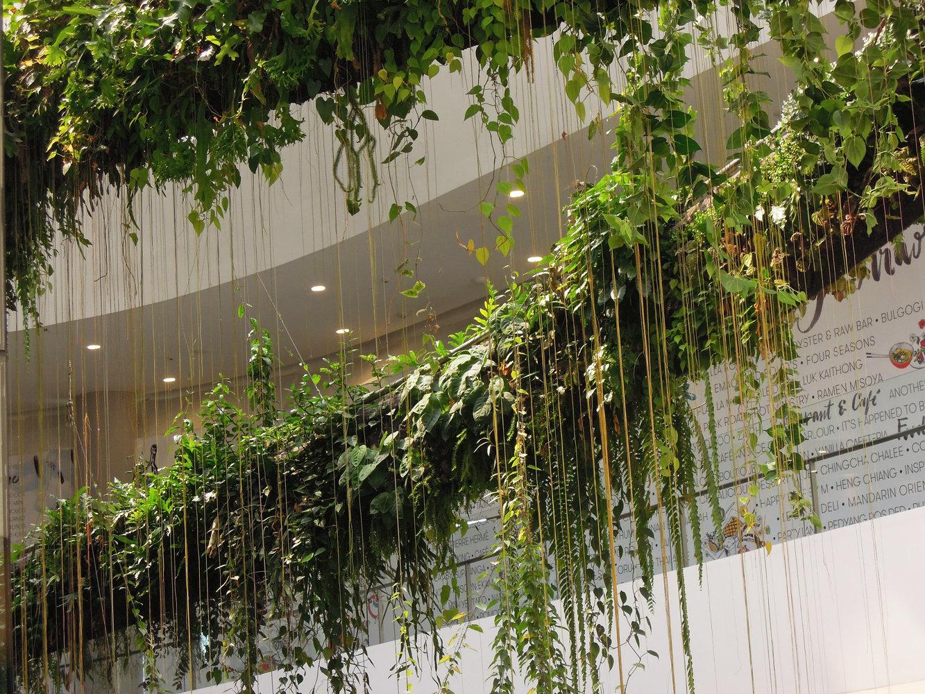 Emquartier Bangkok Mur Vegetal Patrick Blanc