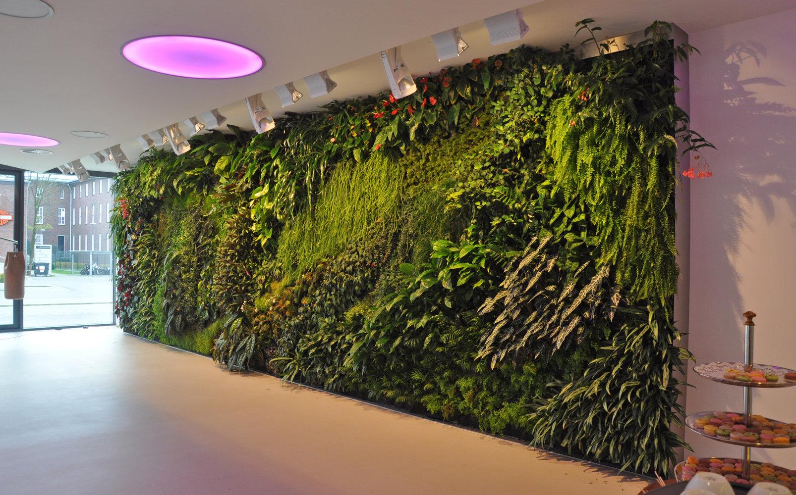 internetsupport bielefeld mur vegetal patrick blanc. Black Bedroom Furniture Sets. Home Design Ideas